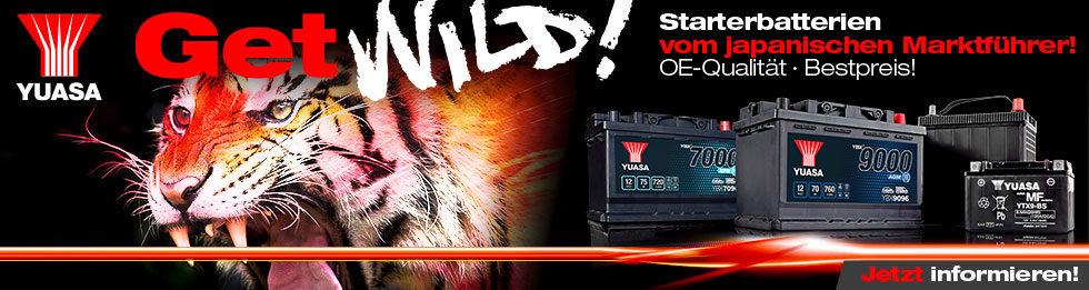 Get Wild! Tiger